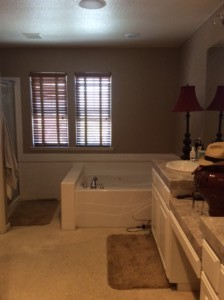 Before | Master Bathroom